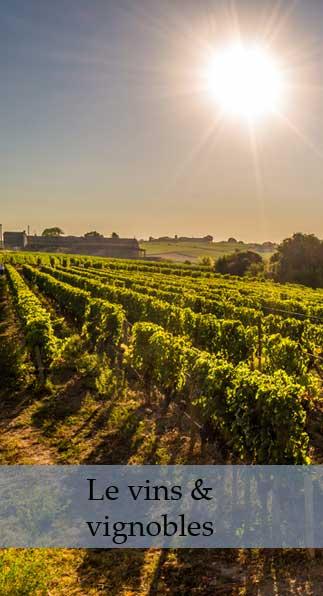 les vins de saint Emilion